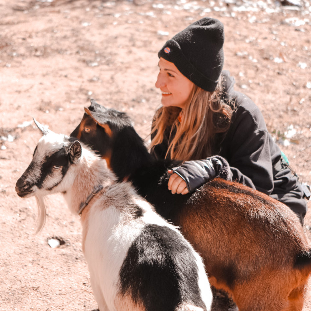 Meet the Goat Lady